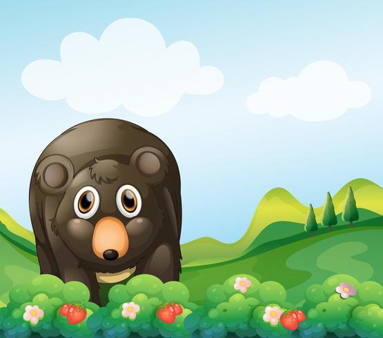 Ein dunkelgrauer Bär im Garten