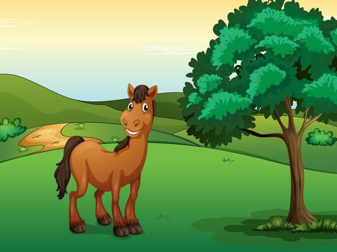 Um cavalo sorridente