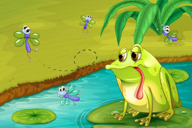 The sad frog in the pond vector