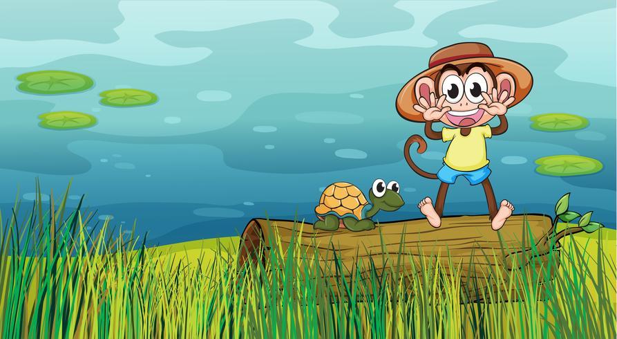 Um macaco sorridente e uma tartaruga