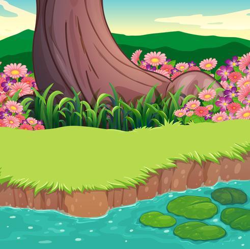 Uno scenario sulla riva del fiume