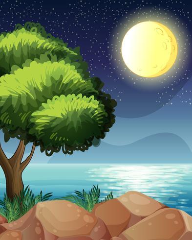 Una luna brillante y la hermosa naturaleza.