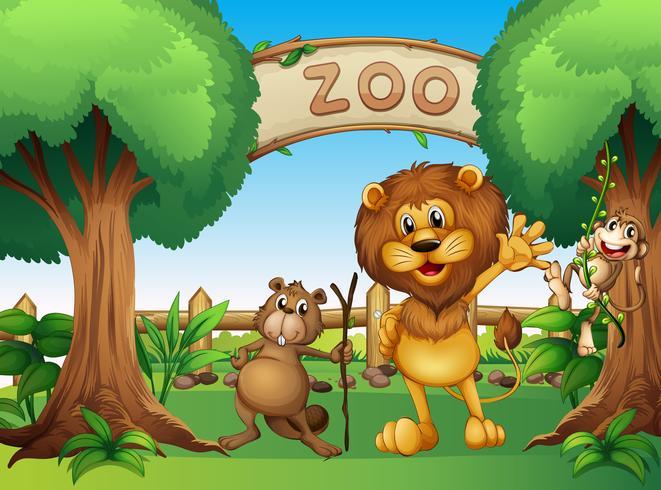 Un singe, un castor et un lion au zoo