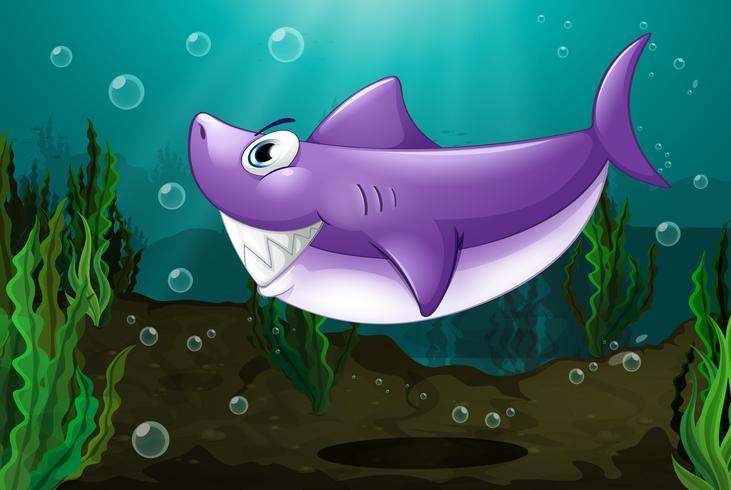 Un gran tiburón bajo el mar