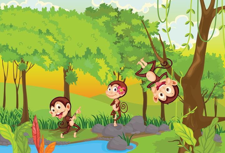 Monos atrevidos vector