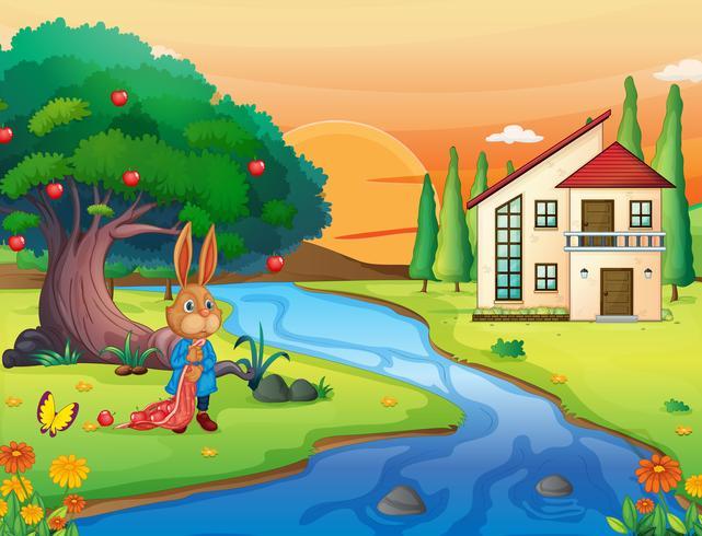 un conejo en la naturaleza