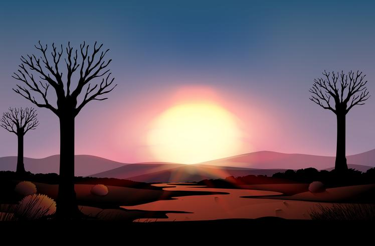 Silueta puesta de sol