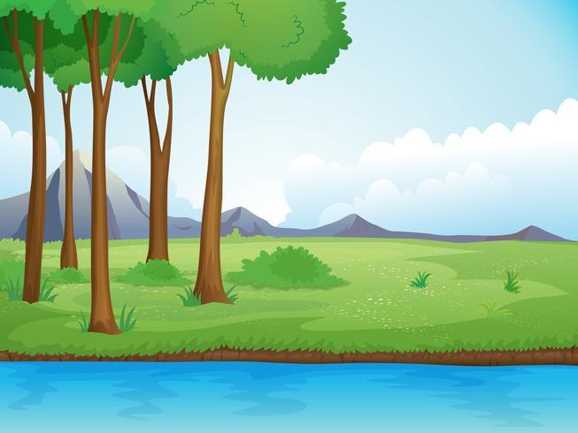 Une rivière et un arbre