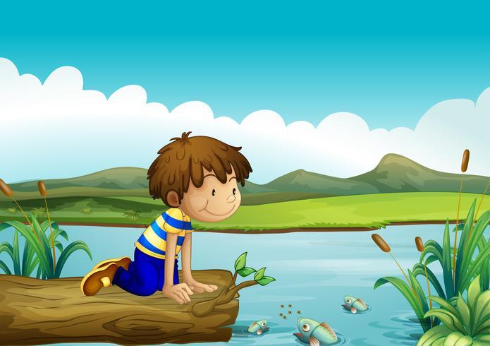 Um, menino jovem, observar, a, peixe