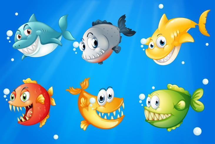 Sechs bunte Fische unter der Tiefsee