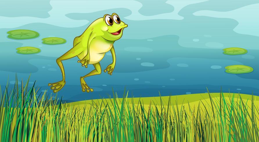 En groda som hoppar i gräset
