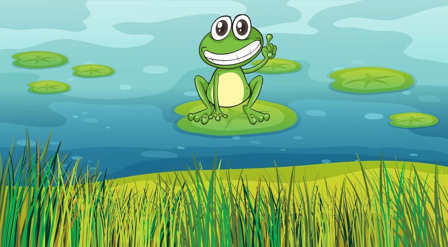 En leende groda i dammen