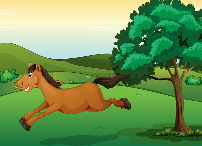 Un cheval souriant