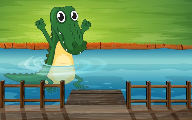 Um crocodilo