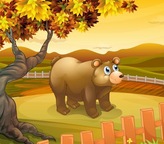 Un gran oso dentro de la cerca.