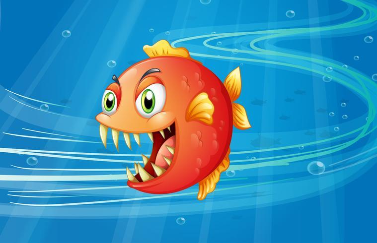 Una piraña roja bajo el mar.