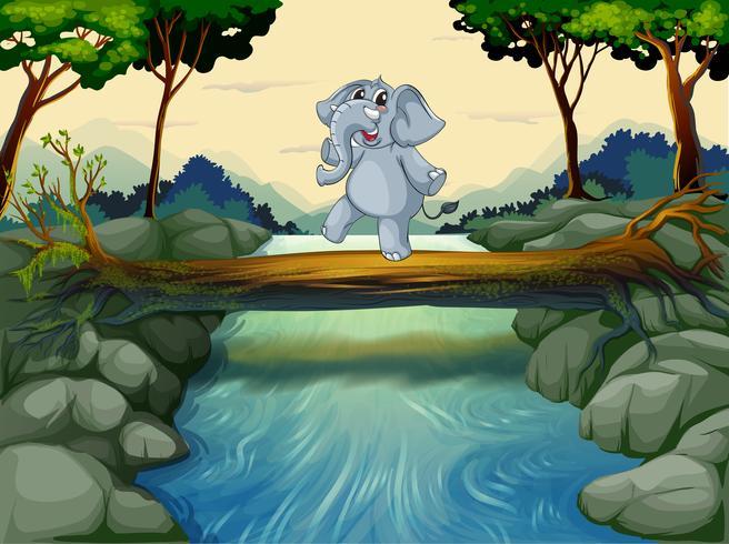 Un elefante che attraversa il fiume