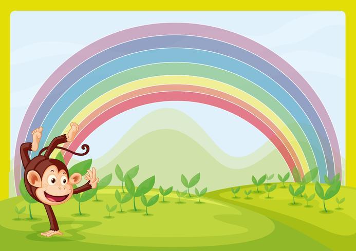 Arcoiris y monos jugando en la naturaleza