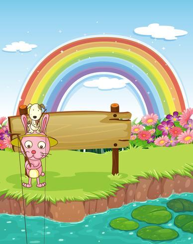 Kanin och regnbåge