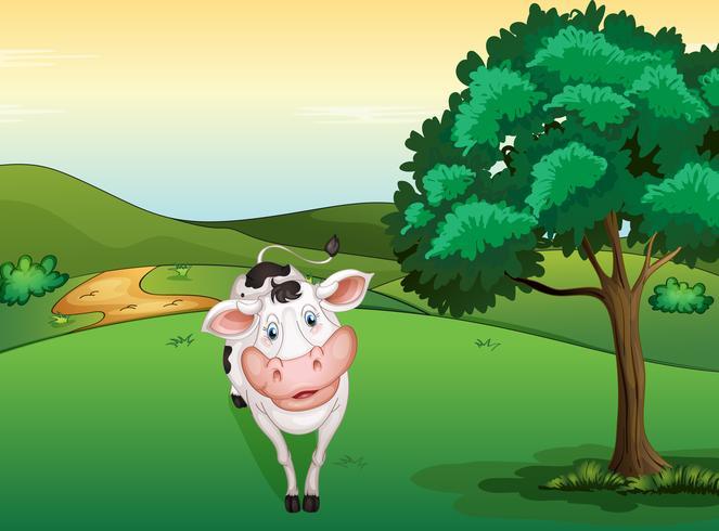 Une vache souriante
