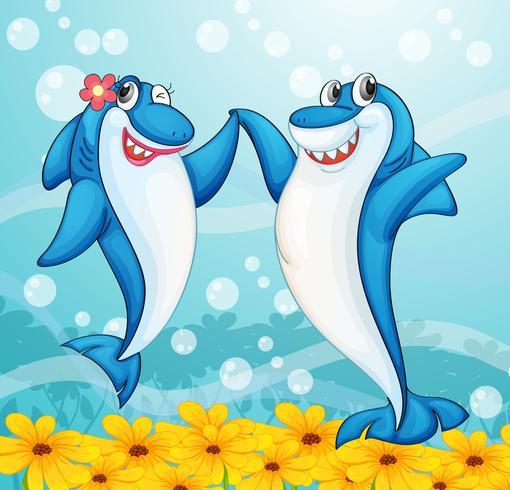 dançando peixes baleia