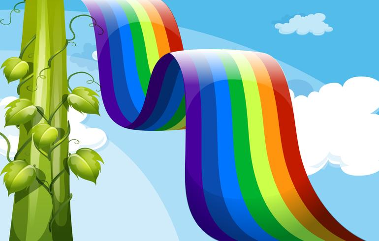 A rainbow and a tall vineplant