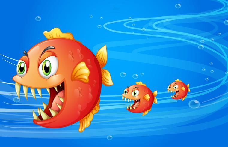 Drie vissen onder het water