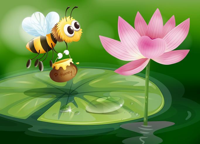 Una abeja con una olla de miel encima de un nenúfar