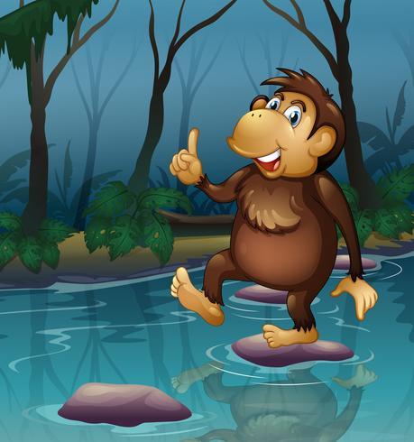 Una scimmia nello stagno