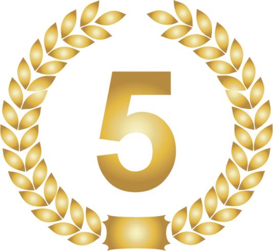 5: e plats märke / medalj
