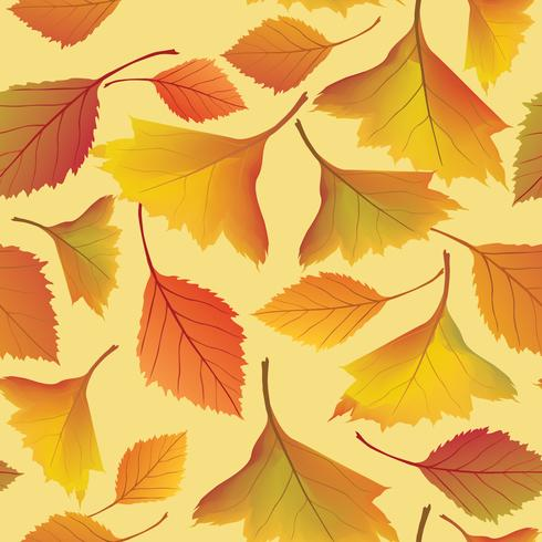 Autumn leaves background. Floral seamless pattern. Fall leaf nature vector