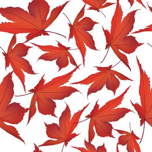 Fondo de hojas de otoño. Patrón floral sin fisuras Naturaleza de la hoja de otoño vector