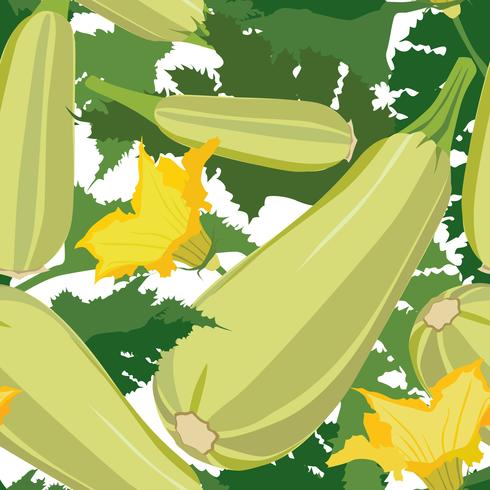 Vegetable squash seamless pattern. Healthy food background.