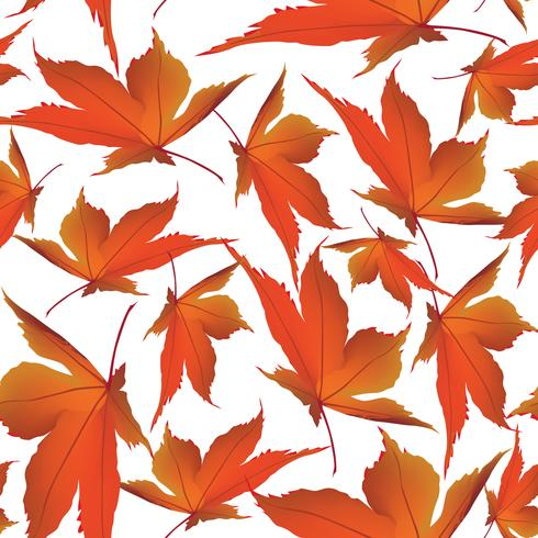 Herfstbladeren achtergrond. Naadloze bloemmotief. Val bladaard vector