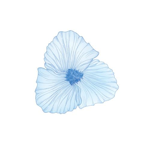 Flor aislada. Ilustración floral grabado. Conjunto de vectores