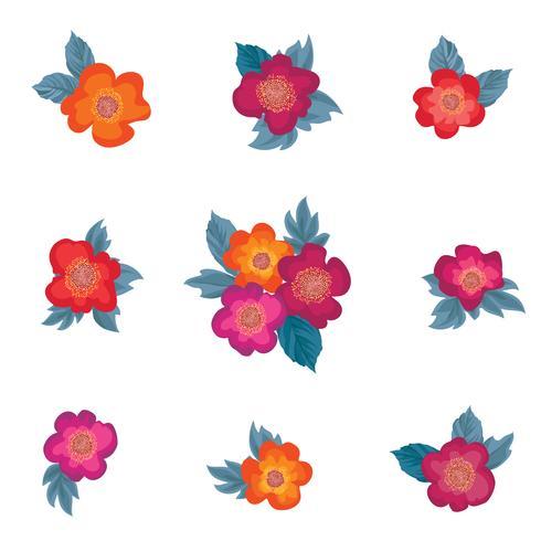 Bouquet di fiori. Cornice floreale Set di biglietti d'auguri. Arredamento estivo vettore