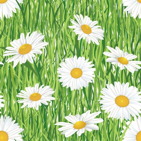 Patrón floral sin fisuras Flores de verano del prado