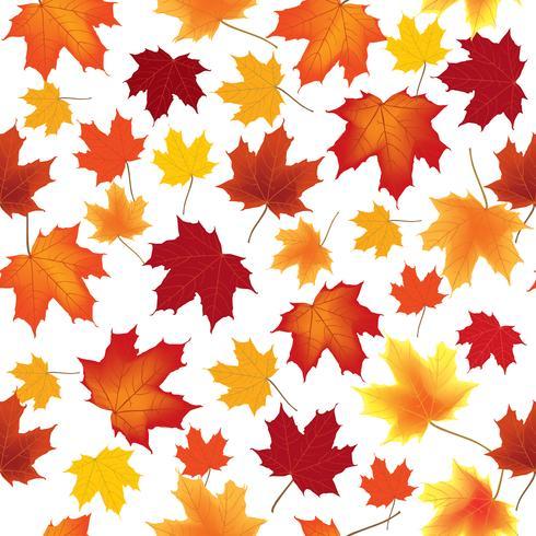Herbstahornblätter nahtloses Muster Blumenhintergrund