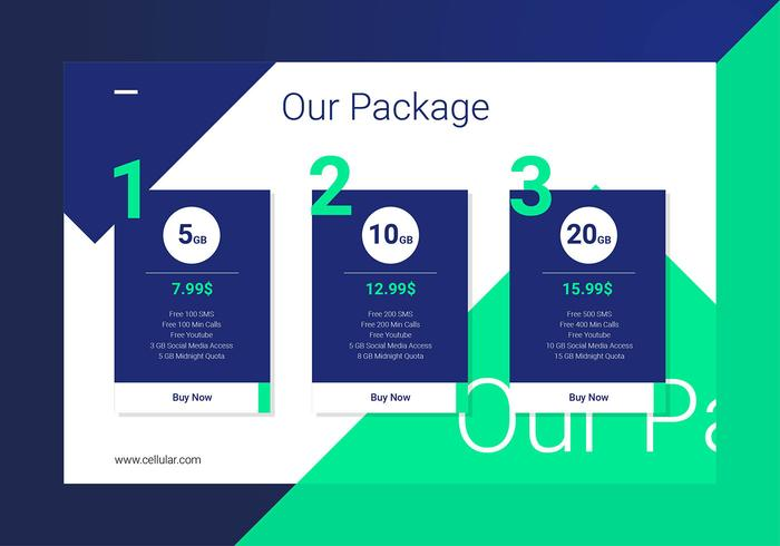 Pricing Table Cellular Provider Interface Template