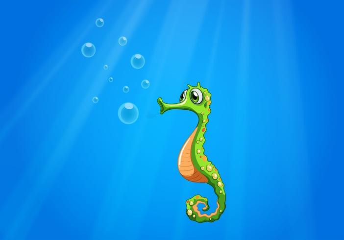 Un hippocampe sous la mer