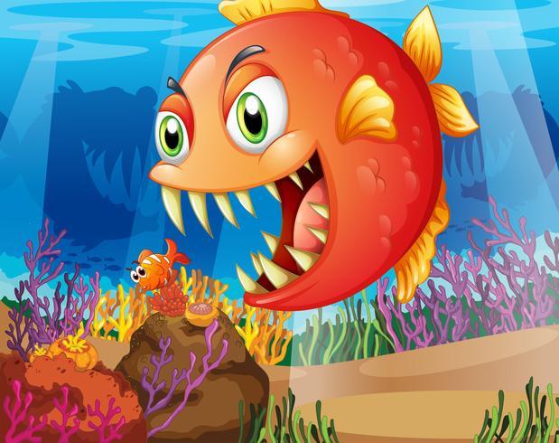 Un depredador y una presa bajo el mar.