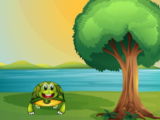 Een schildpad naast een boom aan de rivier