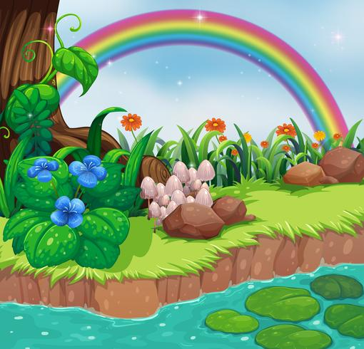 A riverbank with flowers and a rainbow