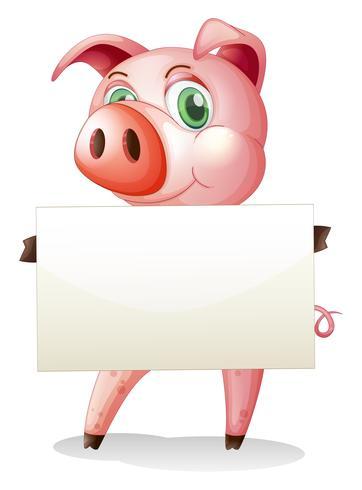 Um porco gordo segurando uma placa vazia