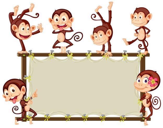 Banner di scimmia