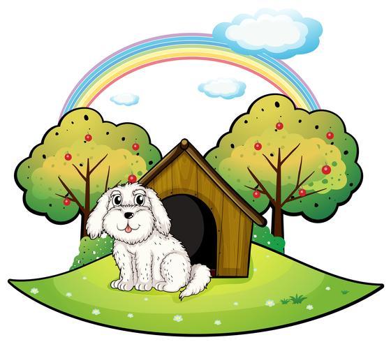 Een puppy in de buurt van een appelboom