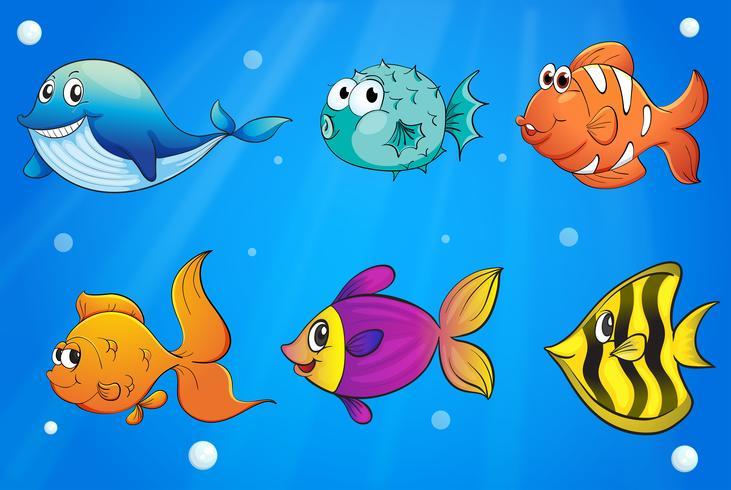 Diversi tipi di pesci sotto l'oceano