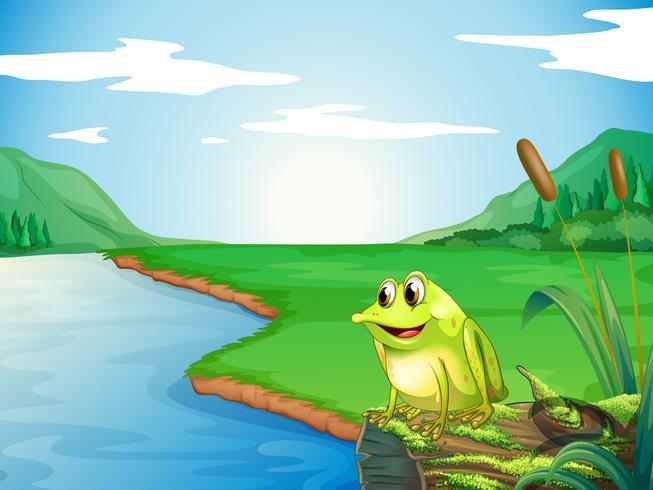 Een kikker aan de rivieroever