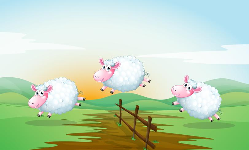 Conteggio delle pecore