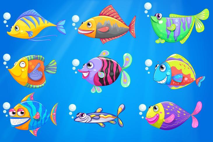Ett hav med en skola av färgglada fiskar